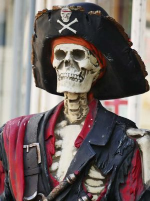 My Fascination with Pirates: A Childhood Walk on the Wild Side.